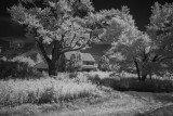 Abandoned Farm House.jpg
