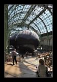 Anish Kapoor au Grand Palais  EPO_3525