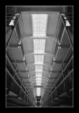 Alcatraz EPO_3707.jpg