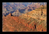 Grand Canyon National Park EPO_4583.jpg