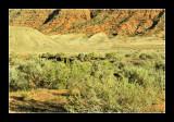 Arches National Park EPO_4145.jpg
