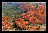 Bryce Canyon National EPO_3975.jpg