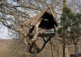 Forest Art Center, organic bird house