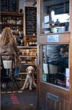 Pet friendly bar