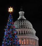 Congressional Christmas