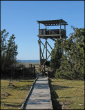 Bird tower.jpg