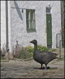 Wood Goose!jpg
