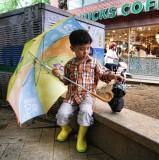 Visions Of Seoul: The Umbrellas