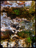 My Abstract Expressionist Photography