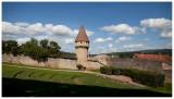 Cluny 2011
