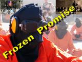Frozen or Forgotten Promise?