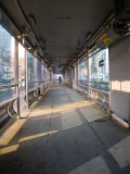 Epz IMGP9100 BRT.jpg