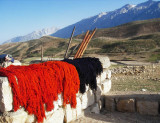 Ashayer dying wool 2.jpg