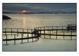 Midnight sun ,salmonfarm and birds............