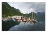Moored boats........