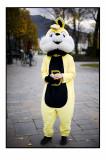 75. Yellow rabbit.......