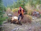 Dad with Elk.