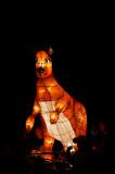 Kangaroo lantern