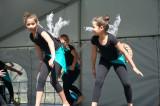 Lyre Bird Dancers