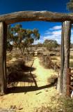Sheepyard at Kinchega