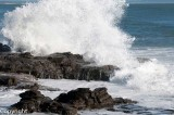 Heavy seas, Alexandra Headland