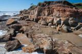 Pincushion Island, North Shore, Maroochydore