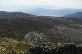 From the Mt Cope track