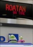The Roatan Gang