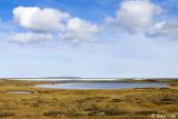 Tundra with lakes - Toendra met meren