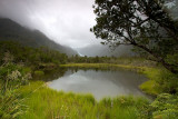New Zealand 016.jpg