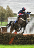 A Day At The Races - Kelso - October 15th 2011