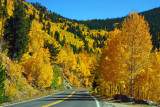 2012-01-Open-ColoradoGold