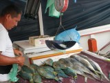 The colourful fish market