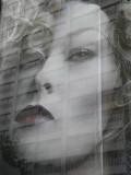 MARKET STREET WINDOW REFLECTION