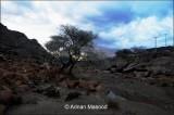 Al-Shafa.jpg