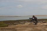 Morroco (Khniffiss lagoon) - Vincent scanning the lagoon for Kelp Gulls