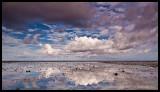 Lady Elliot Island - Above
