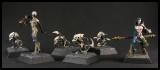 Hybrid Miniatures