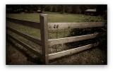 Fence 46