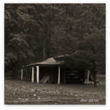 Shed in the Rain