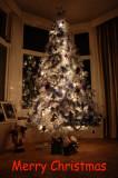 20th December
