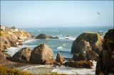 Bodega Bay Seascape