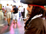Not Your Average Pirate