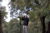 birding in the dehesa