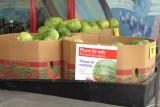 OSHA warnings for watermelon shoppers!!