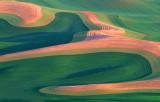 (PNW18) Palouse Hills patterns near Steptoe, WA