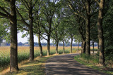 Bellingwolde - Kerkweg