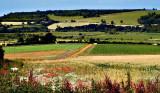 England's Pleasant Pastures Seen