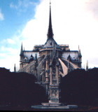 Notre Dame Cathedral in Paris -  (Shot by Dave ) Pentex 35mm.jpg