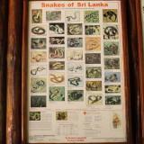 Sinharaja Information